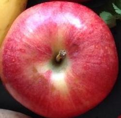 cropped-daily-intake-fresh-foods.jpg